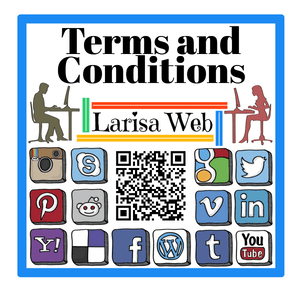 Terms and Conditions Larisa Web Services