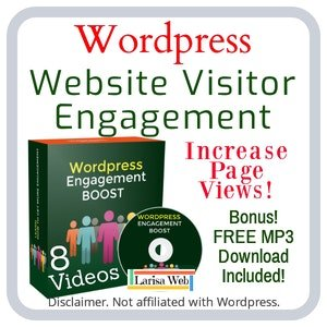 Wordpress Visitor Engagement Video Course